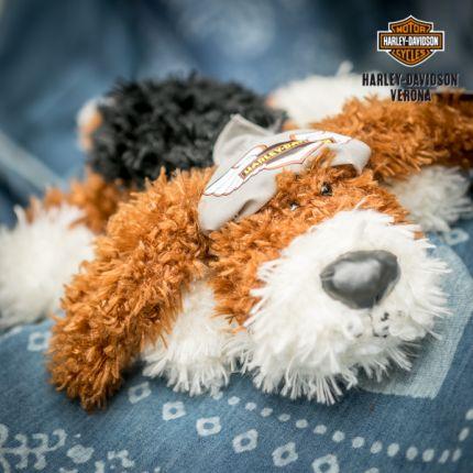 Peluche Harley-Davidson® Brown