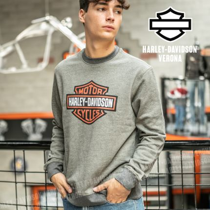 Felpa Harley-Davidson® B&S Graphic Grey