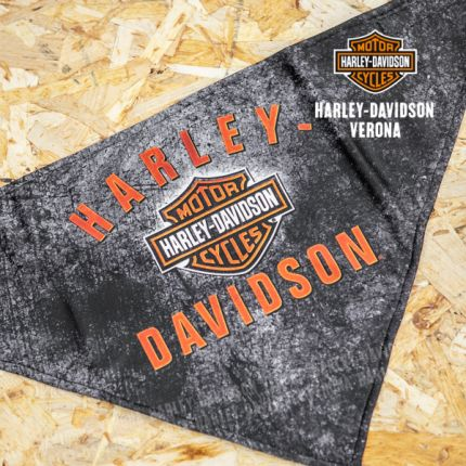 Bandana Harley-Davidson® 3-in-1 Convertible B&S Rockers