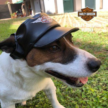 Cappellino in Similpelle Harley-Davidson® Black Vinil