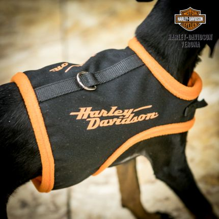 Harley-Davidson® Pet Vest Style Harness Black with Orange