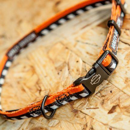 Harley-Davidson® Li'l Bikers™
